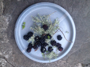 blackberries&thyme